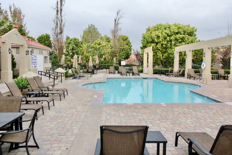 Swimming Pool has benches and chairs with light lamp in California Renaissance