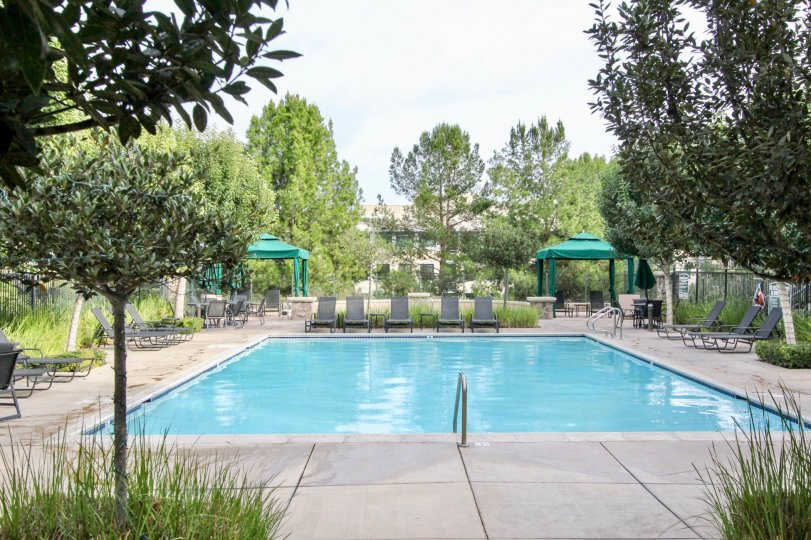 Nice sized outdoor swimming pool featuring several lounge chairs and sun shield canopies.