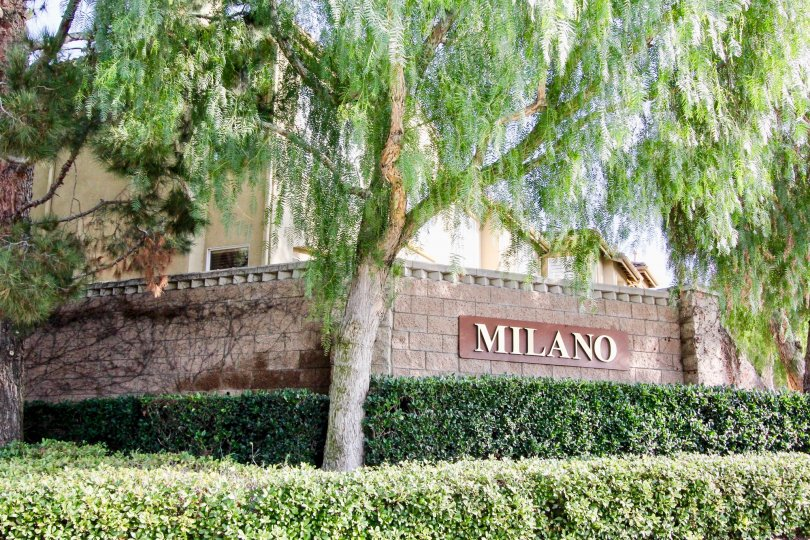 A sunny day in the Milano with a signage on a wall.
