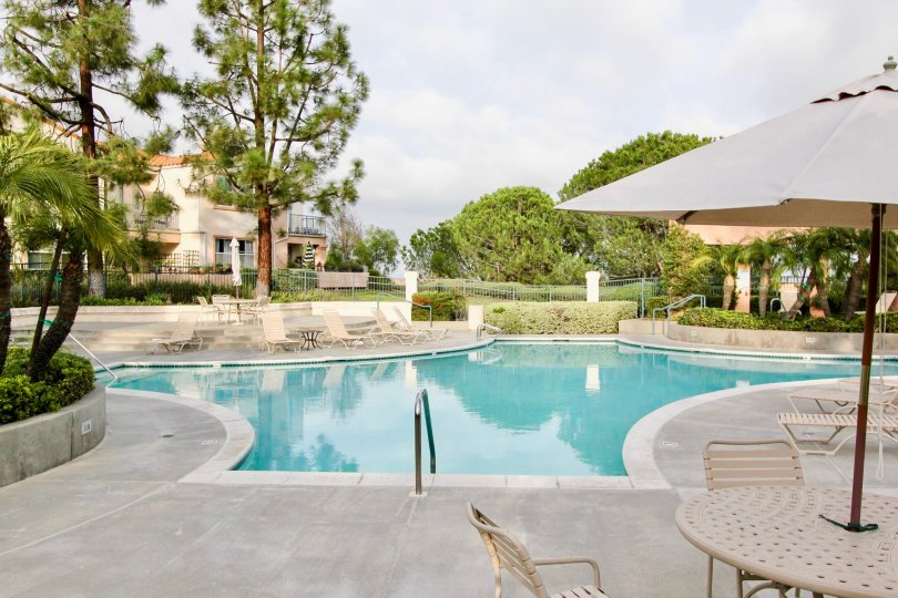 Large swimming pool with ample deck space and unobstructed views with privacy trees at Seacove Villas
