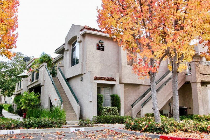 Autumn Leaves experience in Seagate Colony, Aliso Viejo, California