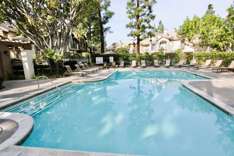 Shady pool surrounded by trees in the St. Tropez Community in Aliso Viejo, CA.