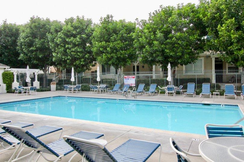 Beautiful community pool in Aliso Viejo's great community of Twelve Picket Lane