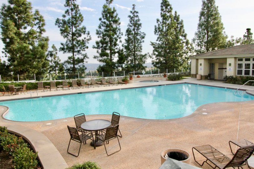 Community swimming pool with large pool deck, tall trees for privacy and adjacent pool house in Vistas Above Wood Canyon