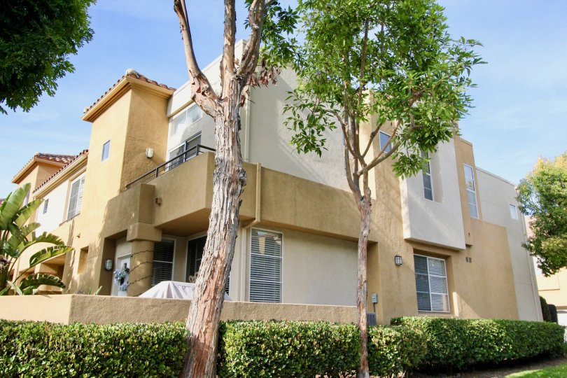 Sunny sky with a building and trees and bushes in the Windsong Community in Aliso Viejo, CA.