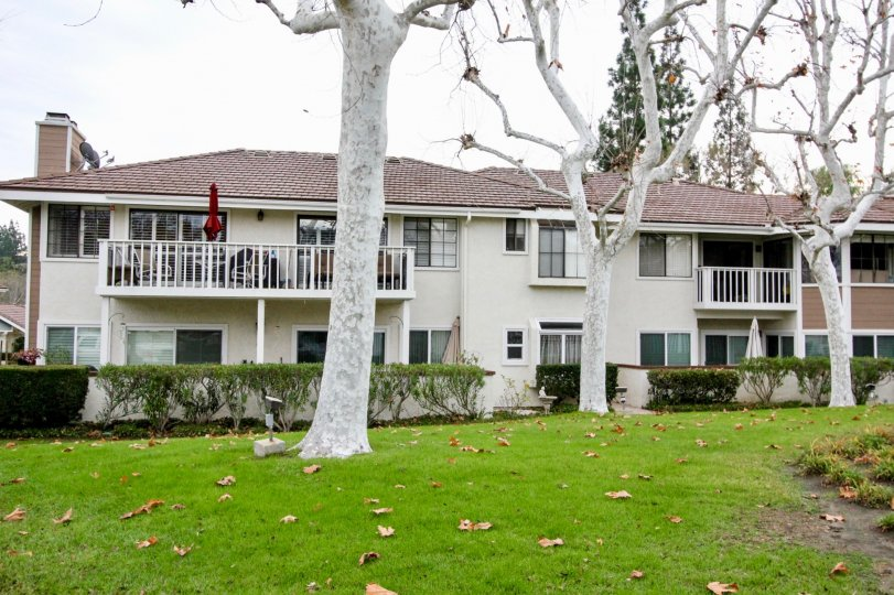 THIS APARTMENTS ARE SHOWN IN THE CITY OF ANAHEIM HILLS WHICH HAS THE BEAUTIFUL LAWN, PLANTS AND THE TREES