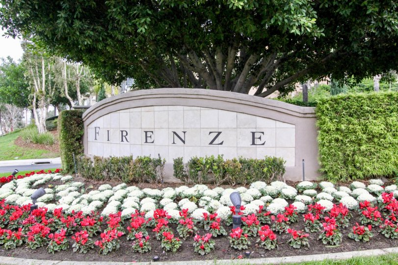 THIS IMAGE REPRESENTS THE GARDEN WHICH IS NAMED AS FIRENZE AND LOCATED IN THE CITY OF ANAHEIM HILLS THAT HAS LOT OF FLOWERS AND PLANTS AND TREES