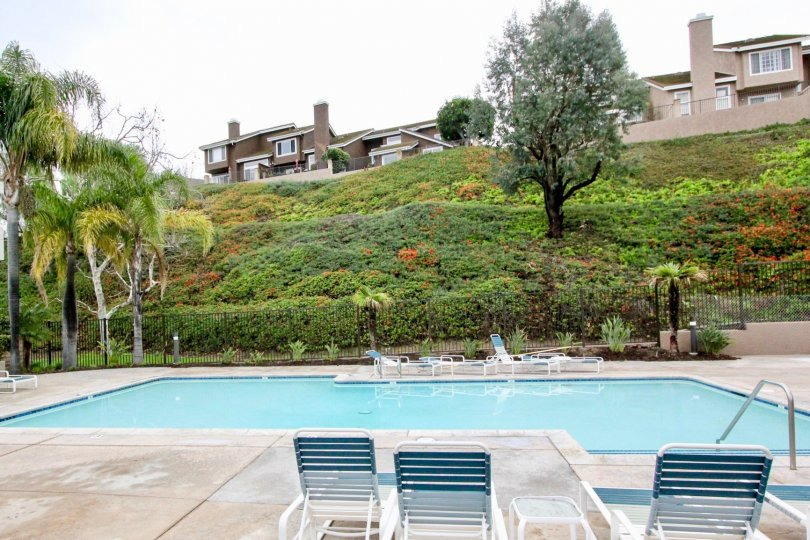 THE FLATS IN THE HORIZONS WITH THE SWIMMING POOL, PLANTS, TREES, CHAIRS