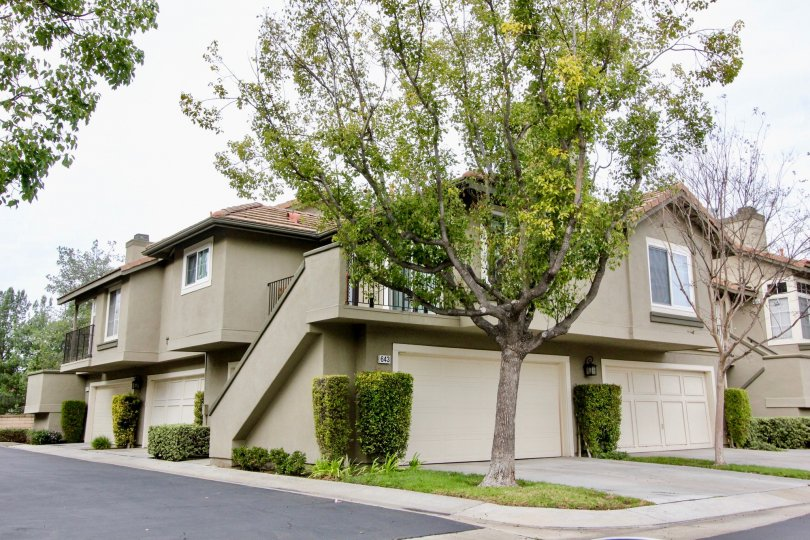 Laurelwood at Sycamore Canyon Building beauty location with tree at Anaheim Hills
