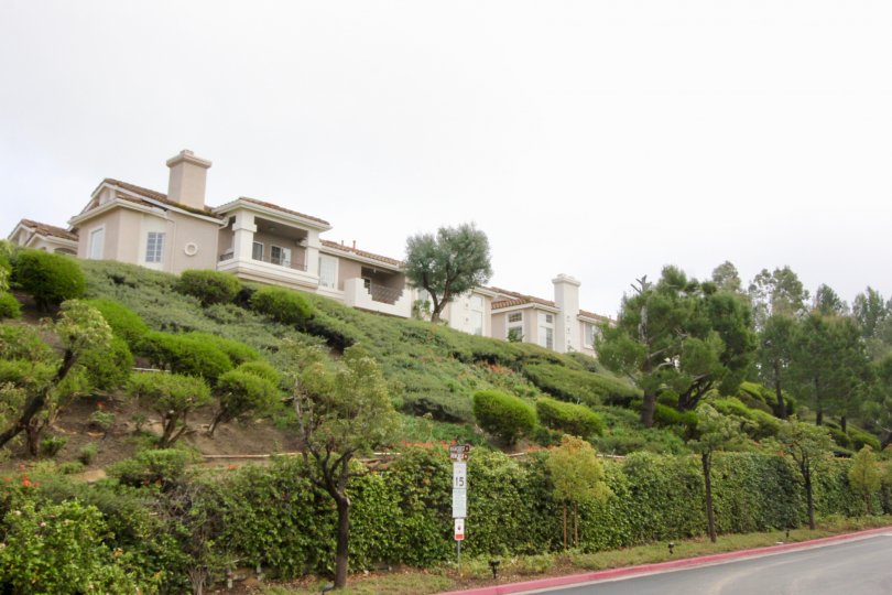 THE HOUSE WITH PLANTS AND TREES UNDER THE ROAD WAY IS SITUATED IN ANAHEIM HILLS