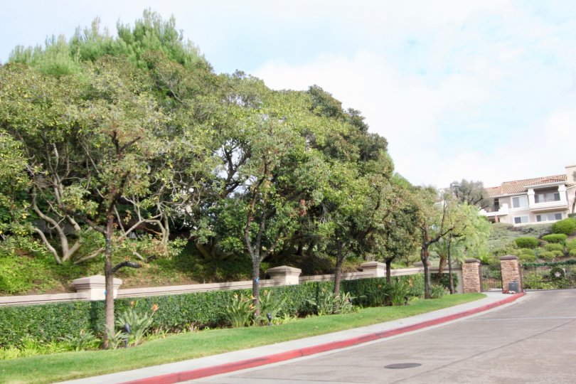Viewpointe Wall with green Garden in Anaheim Hills