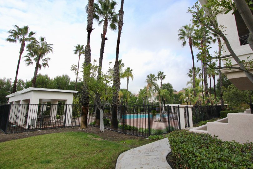 A cloudy day in Viewpointe with a swimming pool behind a gate, surrounded by palm trees.