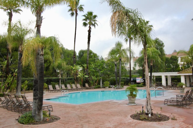 THE BUNGLAOW IN THE VIEWPOINTE WITH THE SWIMMING POOL, CHAIRS, PLANTS, TREES
