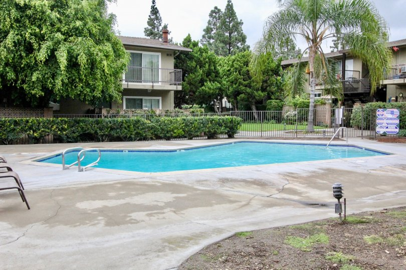 Beautiful Swimming pool at centre of villas with trees in Anaheim Village I of Anaheim