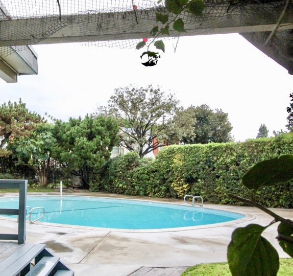 Inviting oval shaped swimming pool in Anaheim Village III, Anaheim, California, is surrounded by trees and a hedge for privacy.