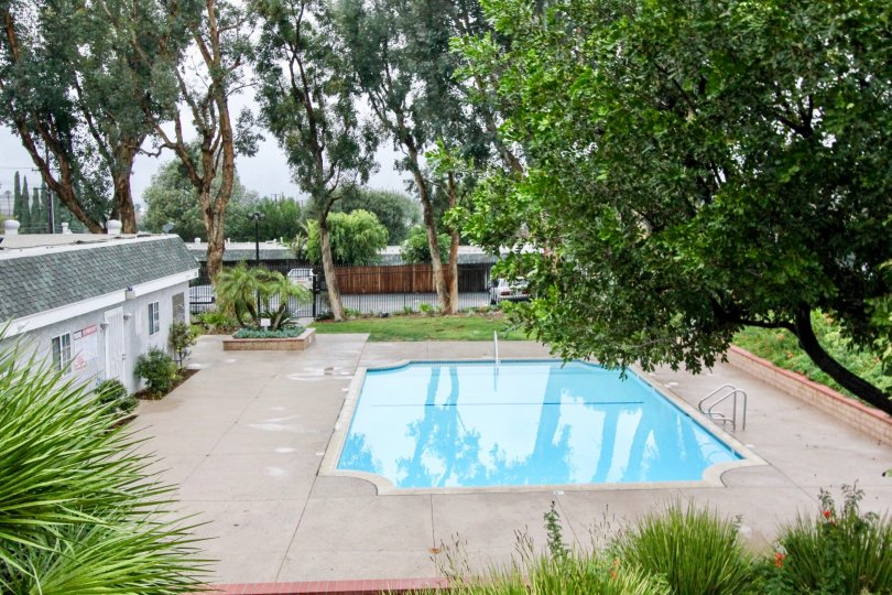 Nice Swimming pool with green trees around in Casa Canon of Anaheim
