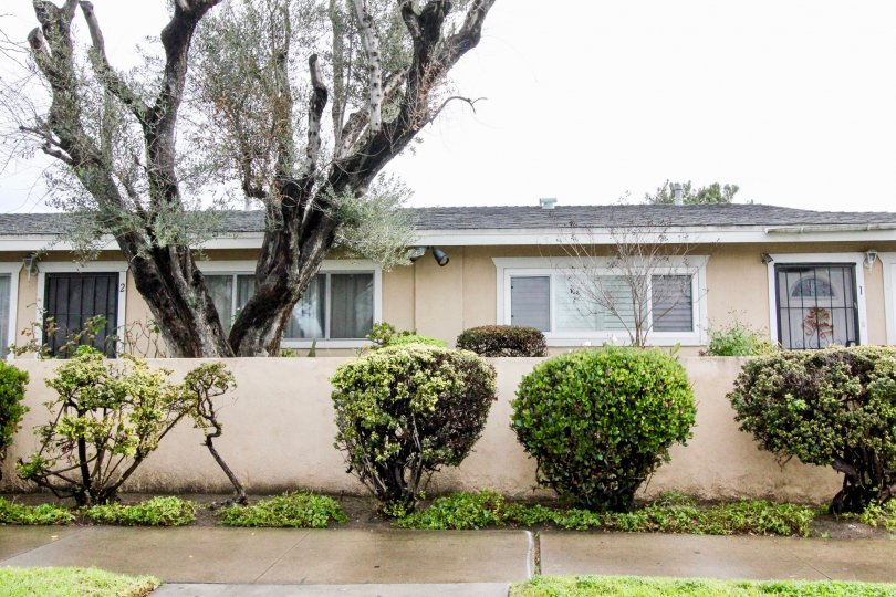 White one-story home with gray roof and garden in Coco Palms, Anaheim CA