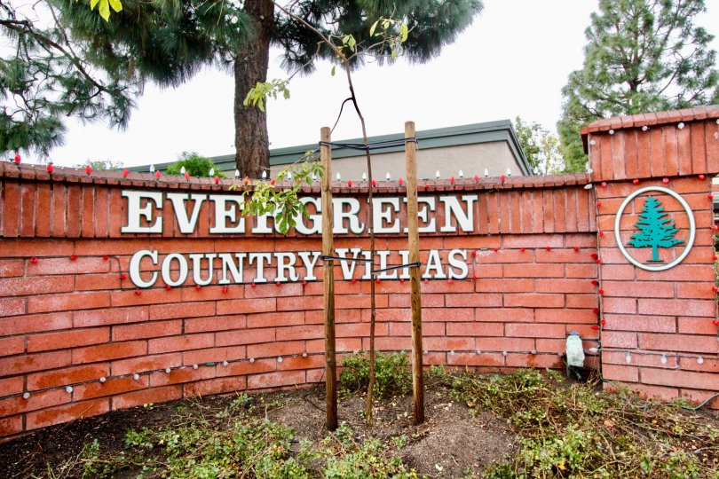 THIS IMAGE VIEWS THE NAME BOARD AND LOGO ON THE WALL ON THE BACKSIDE TREES ARE THERE IN ANAHEIM