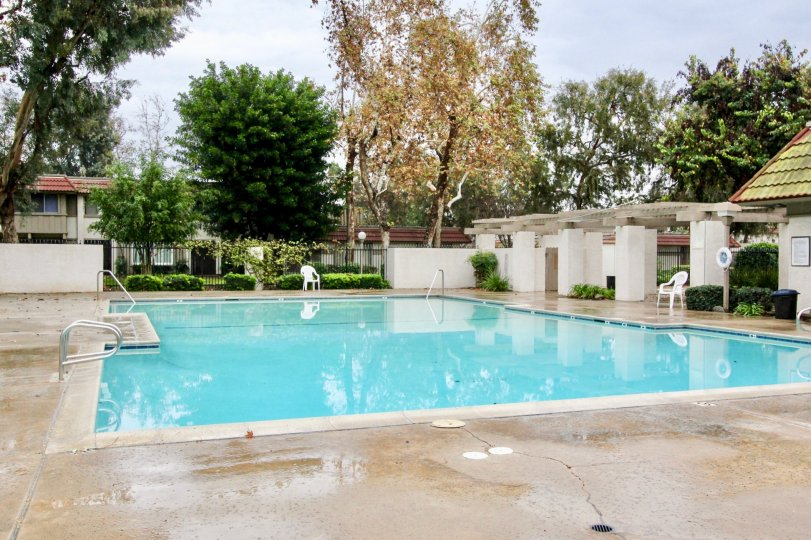 THE BEAUTIFUL SWIMMING POOL IS LOCATED IN PARKDALE THAT CONTAINS LOT OF CHAIRS, SURROUNDING MANY PLANTS TREES ARE VISIBLE