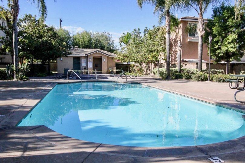 The Peppertree Walk large community pool in Anaheim California.