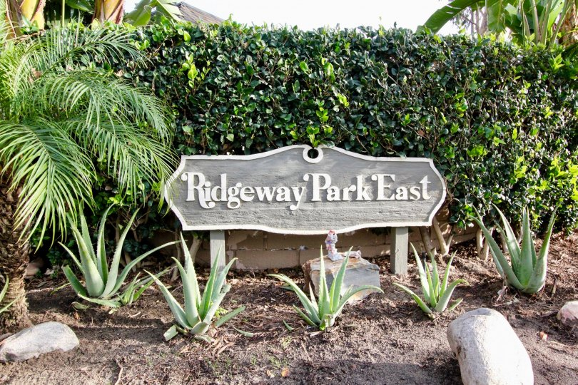 A WARM DAY IN THE Ridgeway Park East WITH A PARK THAT HAS FIVE ALOVERA PLANT IN THE FRONT