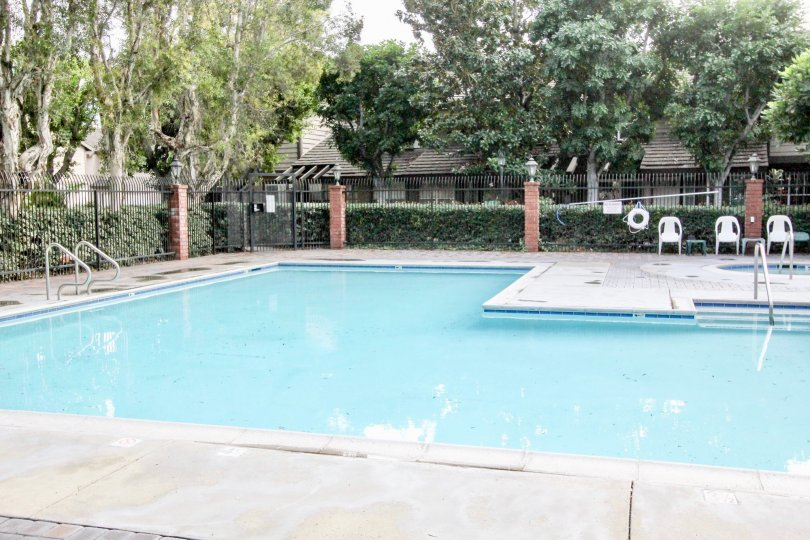 THIS SWIMMING POOL IS LOCATED IN ANAHEIM CITY, SURROUNDING MANY PLANTS, TREES ARE THERE