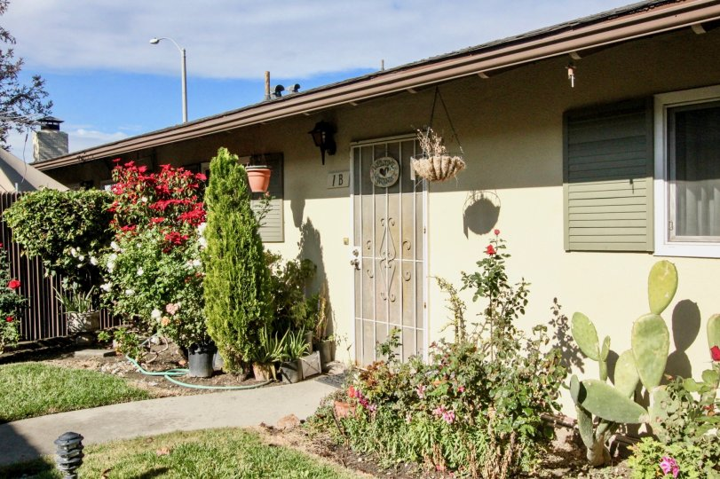 THE FRONT OF THE HOUSE WITH MANY PLANTS WITH FLOWERS, LAWN, NUMBER ON THE WALL ARE SHOWN IN ANAHEIM CITY
