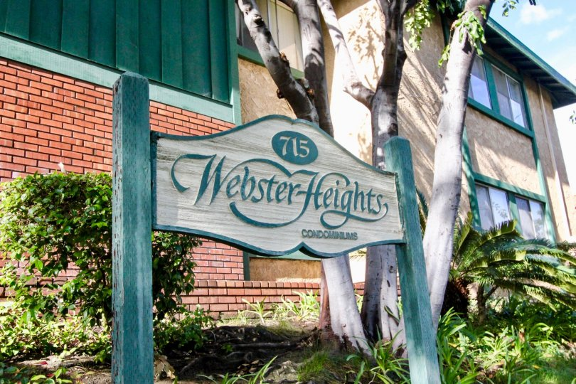 THE FLAT IN THE WEBSTER HEIGHTS WITH THE 715 WEBSTER HEIGHTS CONDOMINIUMS BOARD, PLANTS, TREES