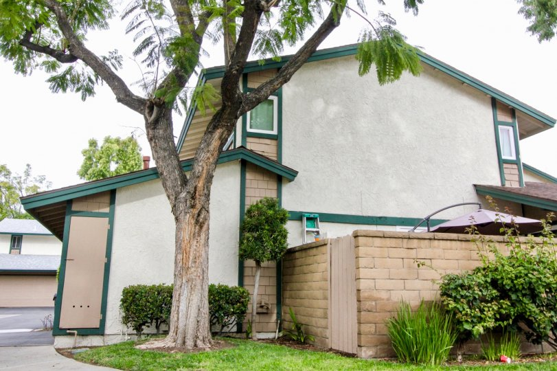 Marvellous Villa with green garden and trees in Cameron Park of Buena Park