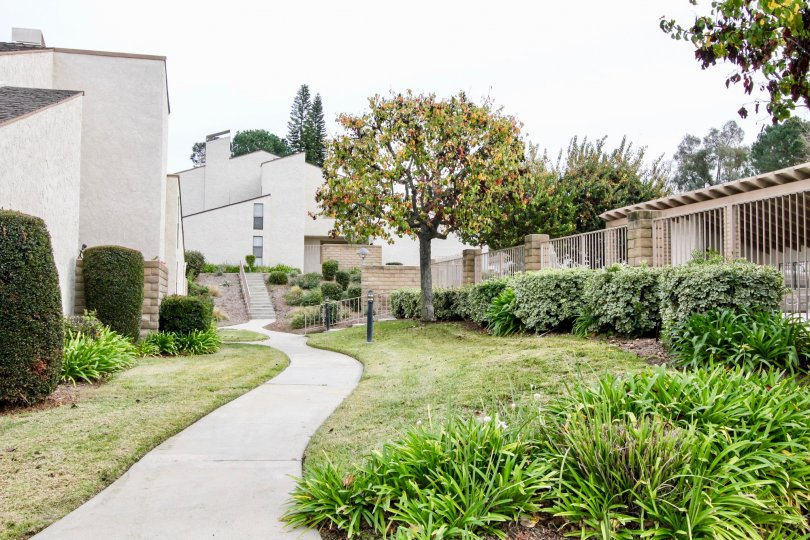 THIS IMAGE REPRESENTS THE PATHWAY TO THE HOME ON THE BOTHSIDE LAWN WITH PLANTS ARE THERE IN BUENA PARK