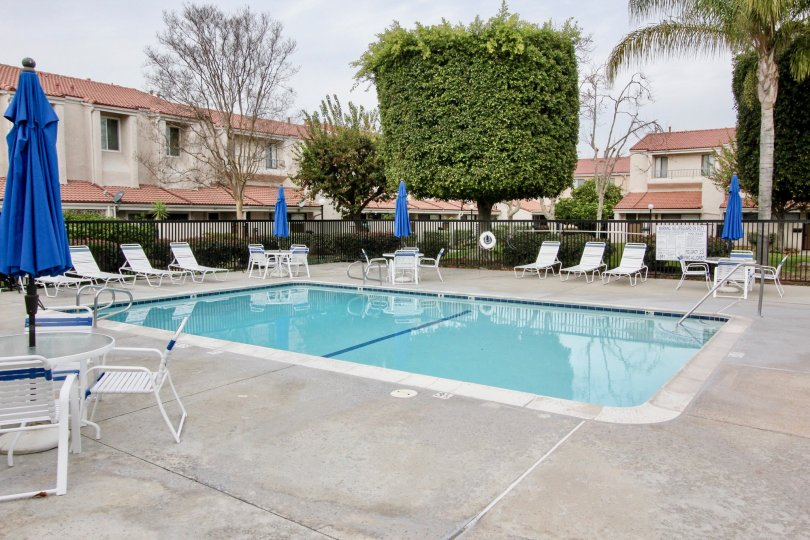 Good looking swimming pool with decorative plants and chairs in Regency East of Buena Park