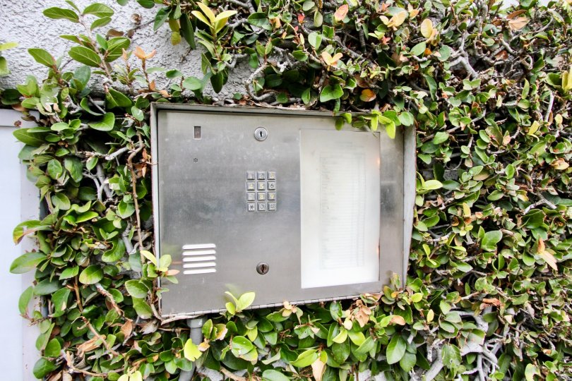 Security phone box is placed between the bushes attached to the wall in Western Bay Estates