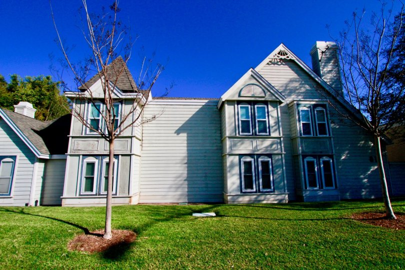 Knowleton Manor apartments with trees and a lawn on a sunny day.