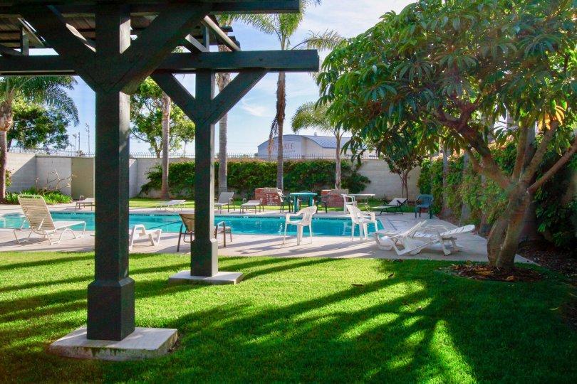 swim with Mesa Verde Villas in Costa Mesa, peace surronds us in california, wonder places in Costa Mesa