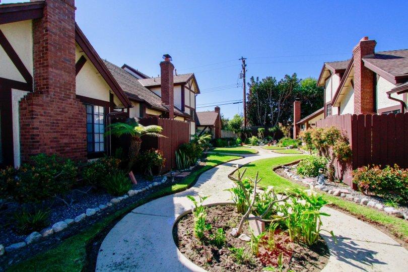 Picadilly Terrace community garden view in Costa Mesa, CA