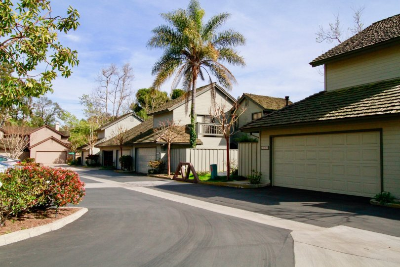 A sunny day outside homes in the community of Seabluff Canyon in Costa Mesa.