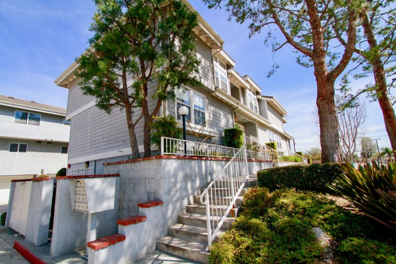 Cypress Pines Cypress California majestic long building with many stairs at front