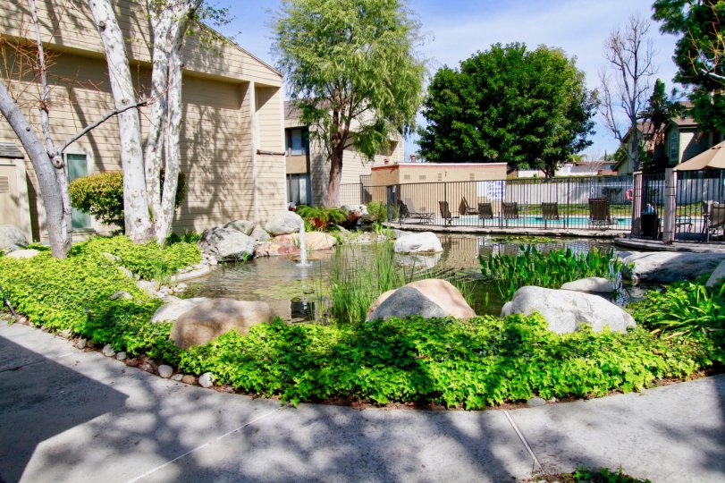 Distinguished Twin Lakes community, Cypress City, California