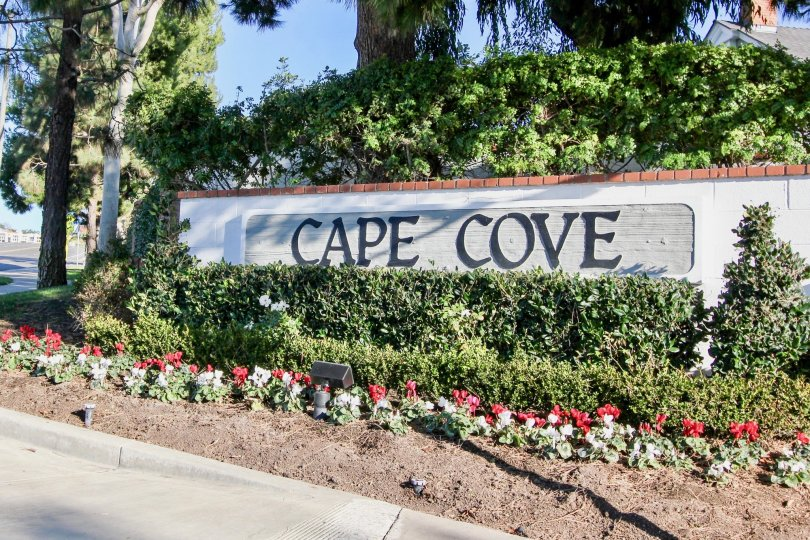 a sunny day in the cape cove with a compound wall that is named with it s community
