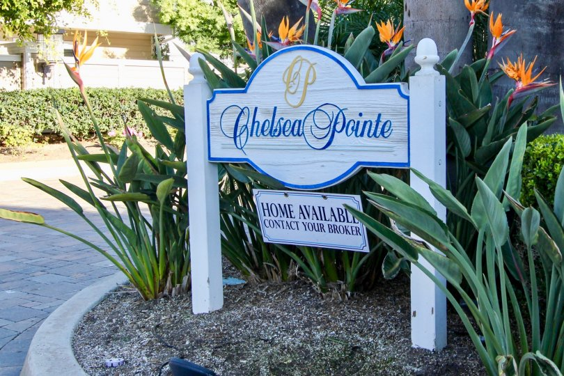 A sunny day in the Chelsea Pointe with a sign board and plants.