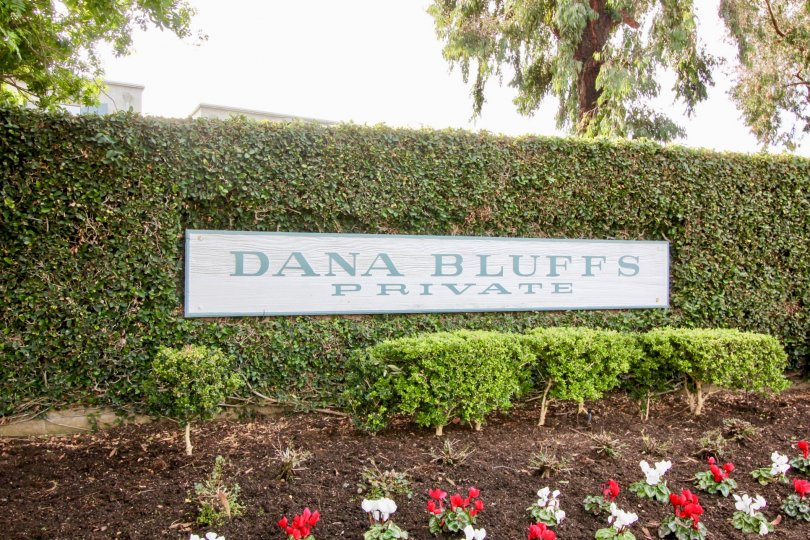 Awsome Dana Bluffs In Dana Point California Country