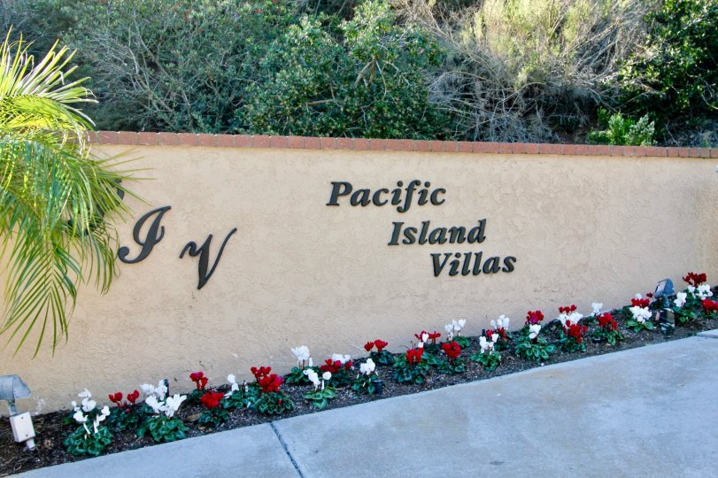 Beautiful Pacific Island Villas In Dana Point California Country