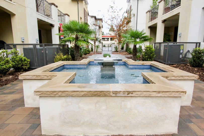 Fountain is placed at center of the area in Solana walk where there are few villas with trees and plants