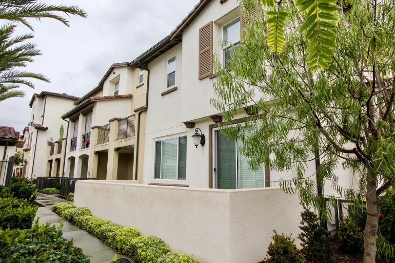 Multiple tree types and green plants lining the residential area in the Solana Walk community.