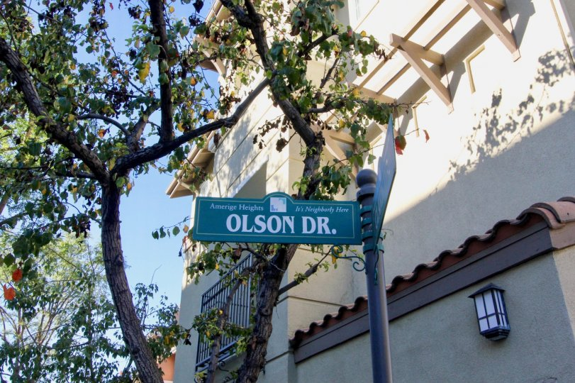 A green sign that says olson dr. with a building beside it in amerige heights community in fullerton, california.