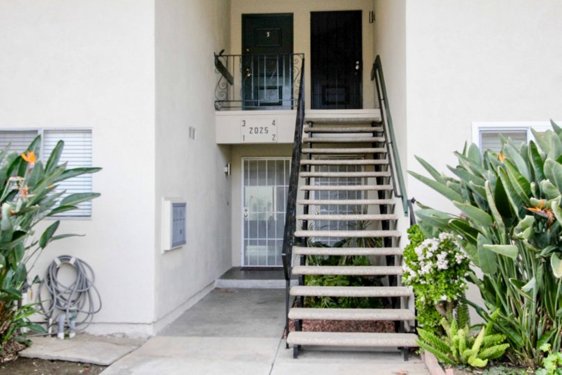 A staircase in the Casa Del Amo community with plants on either side.