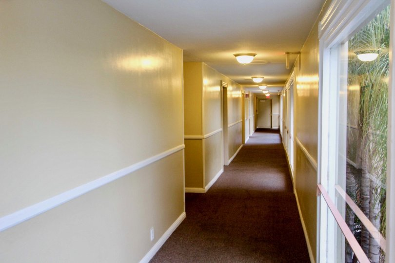 A hallway in Club Acadia with yellow walls and carpet.
