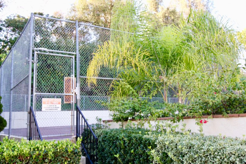 Tennis courts with plenty of trees and plants in the community of Country Villas, Fullerton CA.