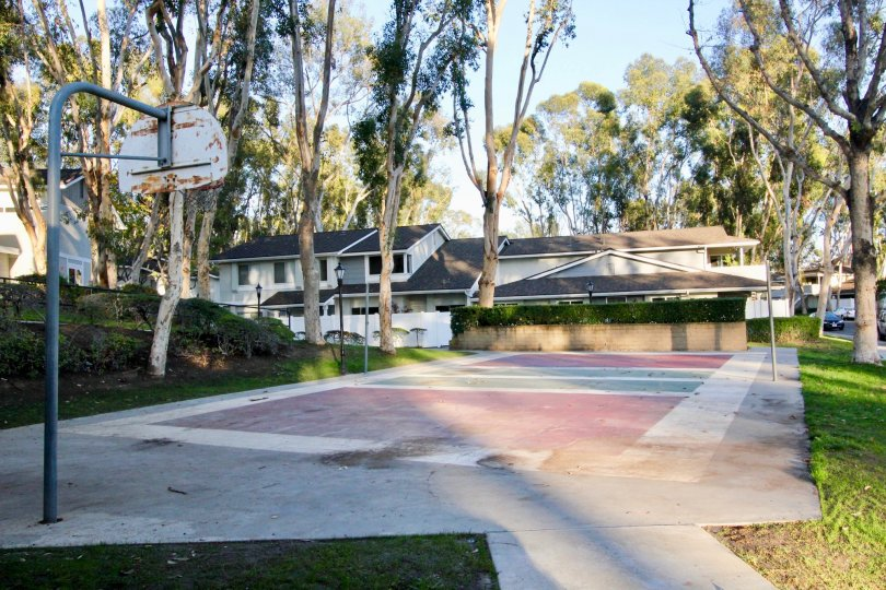 A community basketball court in the Coyote Hills Bluffs neighborhood of Fullerton, California is surrounded by trees and houses.