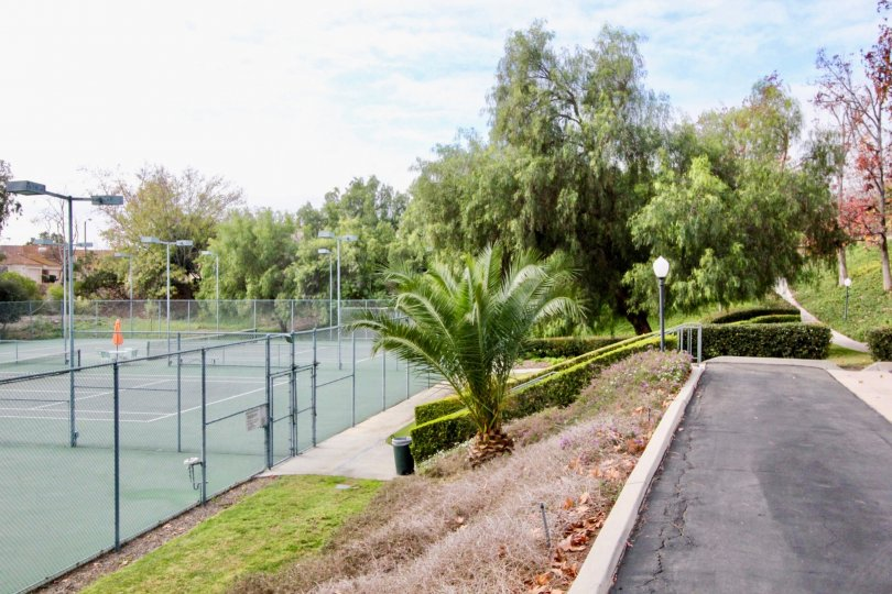 A great day in the Fairway Village with a garden and tennis court.